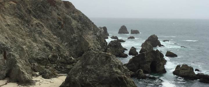 Day Tripping to Bodega Head on the Sonoma Coast