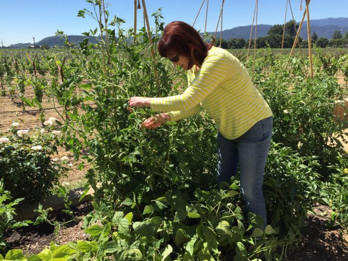 Michaela Rodeno in her garden