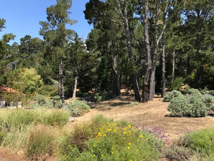 Landscape at Marconi Historic State Park