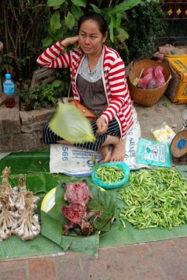 Markets, rat, cat, eat, The temple town of Luang Prabang, Laos: Buddhism, Monks, Rivers and Rich Culture, Luang prabang laos, monks, alms giving, procession, views, temples, Vat Xieng Toung, Vat Khili, Vat Sibounheuang, Vat Sirimoungkhoun Sayaram, Vat Sop Sickharam, Vipassana temple, Phou Si, Chomsy Hill, Mekong, Nam Khan, bamboo bridge, sunset, sunrise, things to do in Luang Prabang, Attractions, sights, time to see monks, Vang vieng, Hanoi, Pakbeng, Slow Boat, Thailand, Chiang Mai, Chiang Rai, Hotel, Waterfall,