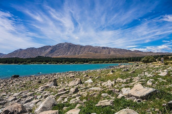 Christchurch to Lake Tekapo, Lake pukaki, Mt Cook, Mount Cook, day trips from Christchurch, Mackenzie Basin, things to do in Lake Tekapo, Things to do in Lake Pukaki, Milky Way, clear sky reserve, Hiking at Lake Tekapo, New Zealand, South Island,