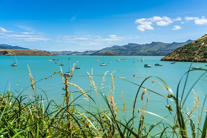 Beautiful water at Akaroa on Banks Peninsula, (day trips from Christchurch, Christchurch day trips, places to visit near Christchurch, things to do in Canterbury New Zealand, visit Christchurch)