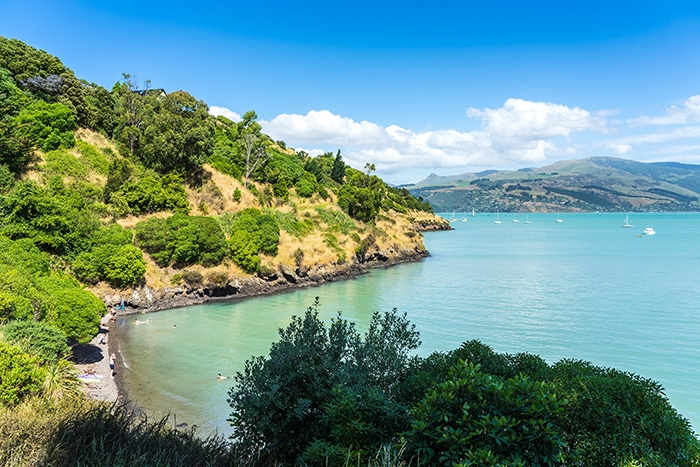 The sheltered cass bay and Corsair Bay on the Banks Peninsula, (day trips from Christchurch, Christchurch day trips, places to visit near Christchurch, things to do in Canterbury New Zealand, visit Christchurch)