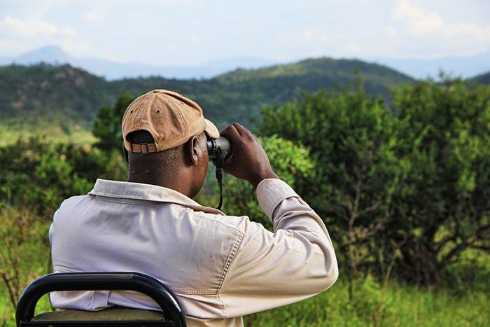 A guide looking out over the savanna, Backpacker Kenya Safari, Tanzania budget safari, Backpackers Africa, Kenya budget safari, Affordable African safari, Safari on a budget, African safari on a budget