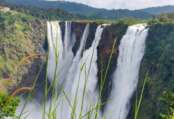 The gorgeous jog falls