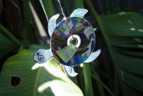 turtle cd