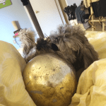 Mr. Twix and the giant Christmas bauble