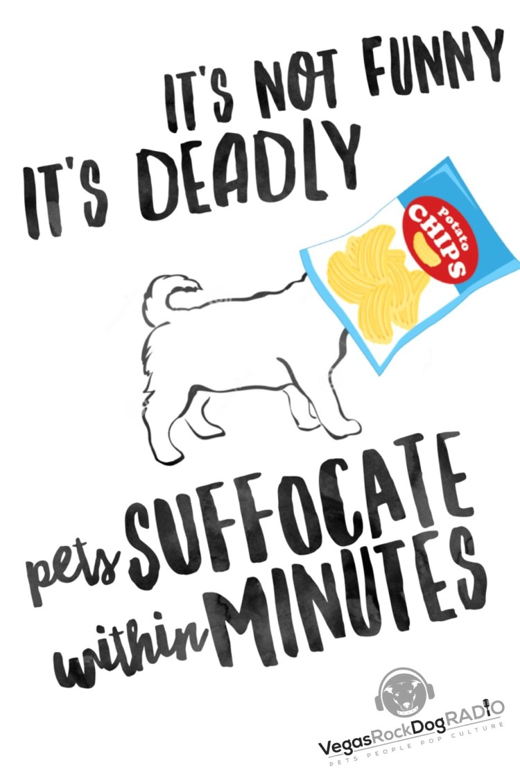 It's not funny it's deadly. Prevent pet suffocation