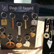 Dogs ID Tagged