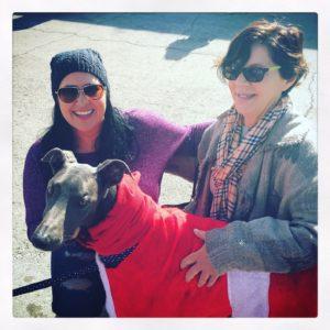 Claudia of the Greyhound Gang