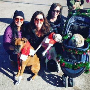A magical day at Santa Paws