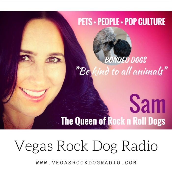 Vegas Rock Dog Radio Is There Such A Thing As A Bonded Pair Of Dogs?