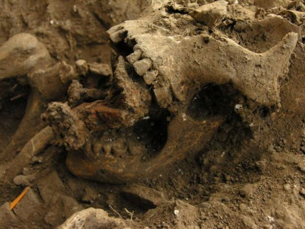 Image: http://www.dailymail.co.uk/news/article-2041671/800-year-old-remains-witch-discovered-graveyard-Tuscany-Italy.html