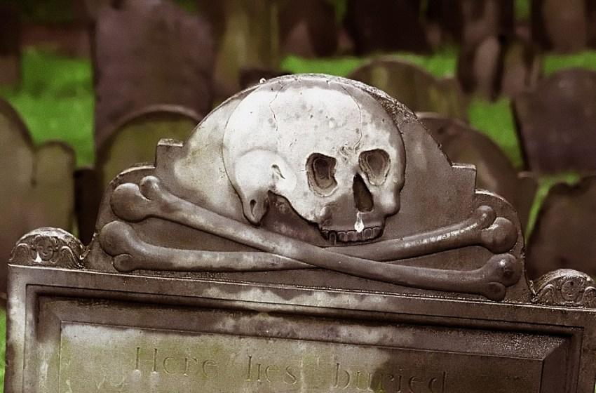 Bones Abroad: Boston