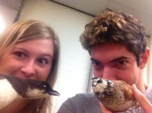 we like birds