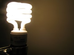 Business and charities unite in call for energy efficiency investment