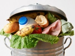Scientists bid to end food waste