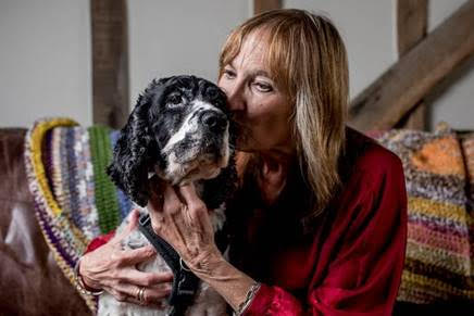 Project helps people and pets flee abuse