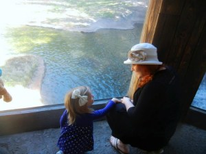 Fort Worth Zoo | The Rose Table