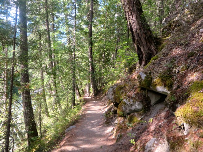 Hiking in Nairn Falls | The Rose Table