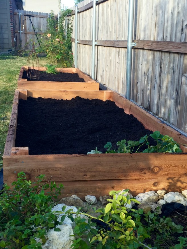 New Cedar Raised Bed Garden | The Rose Table