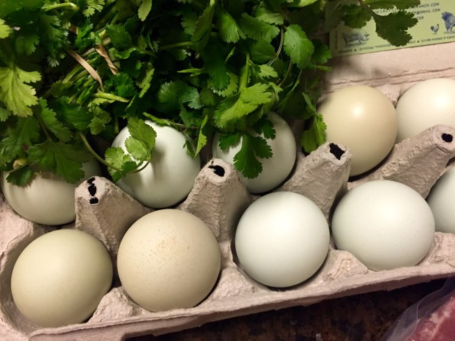 Blue Eggs at Cowtown Farmers Market | The Rose Table