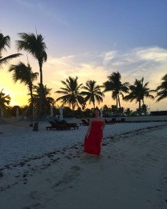Blue Haven Resort Review Turks and Caicos   The Rose Table