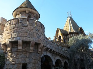 Disneyland Travel Tips | The Rose Table