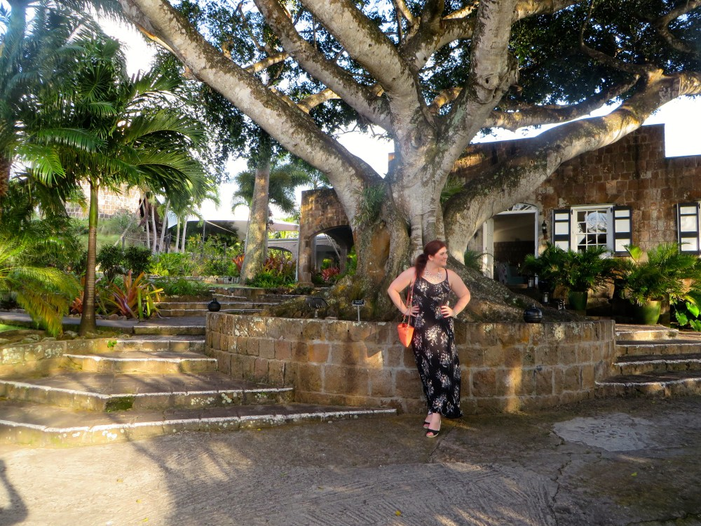 Montpelier Plantation Nevis Review | The Rose Table