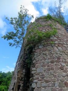 Alexander Hamilton Estate Nevis | The Rose Table