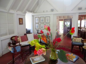 Hermitage Nevis Review   The Rose Table