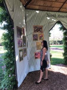 Dallas Arboretum Dallas Blooms | The Rose Table