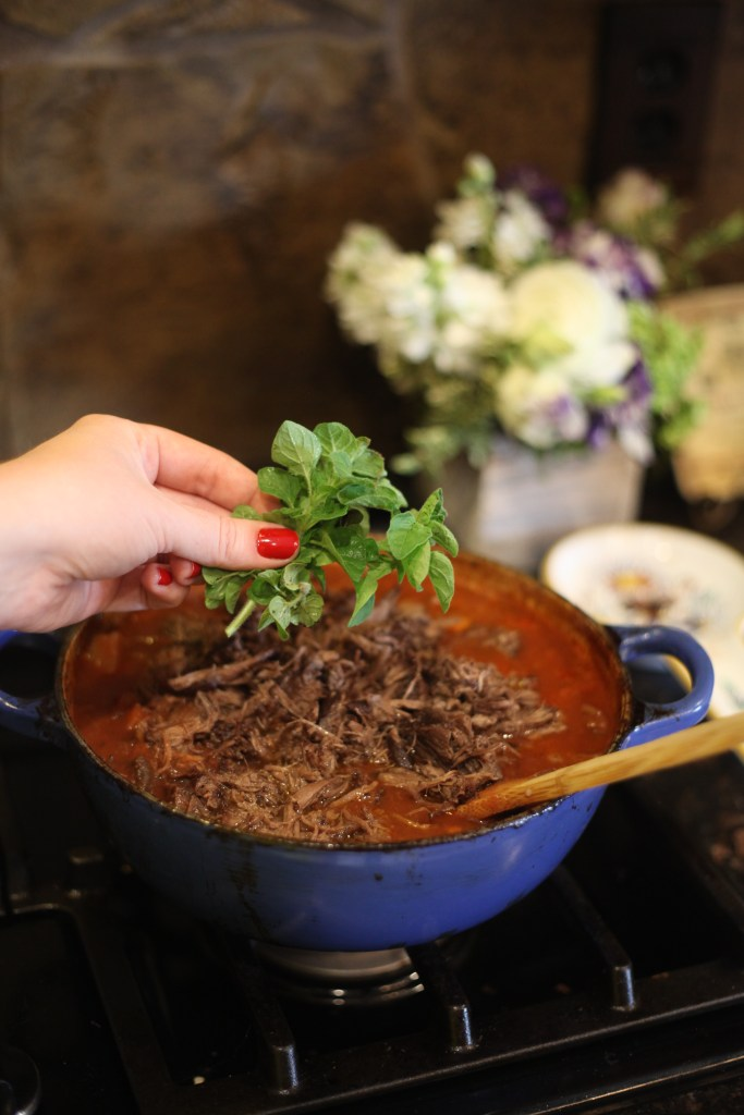 Beef Ragout Beauty and the Beast Recipe | The Rose Table