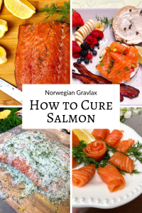 How to Cure Salmon / How to Make Lox, Gravlax