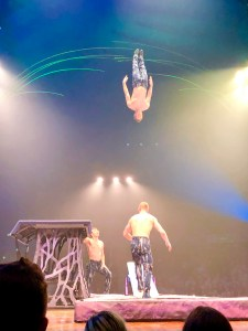 Cirque du Soleil Amaluna Review | The Rose Table