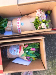 Stargazer Barn Flower Delivery Review | The Rose Table
