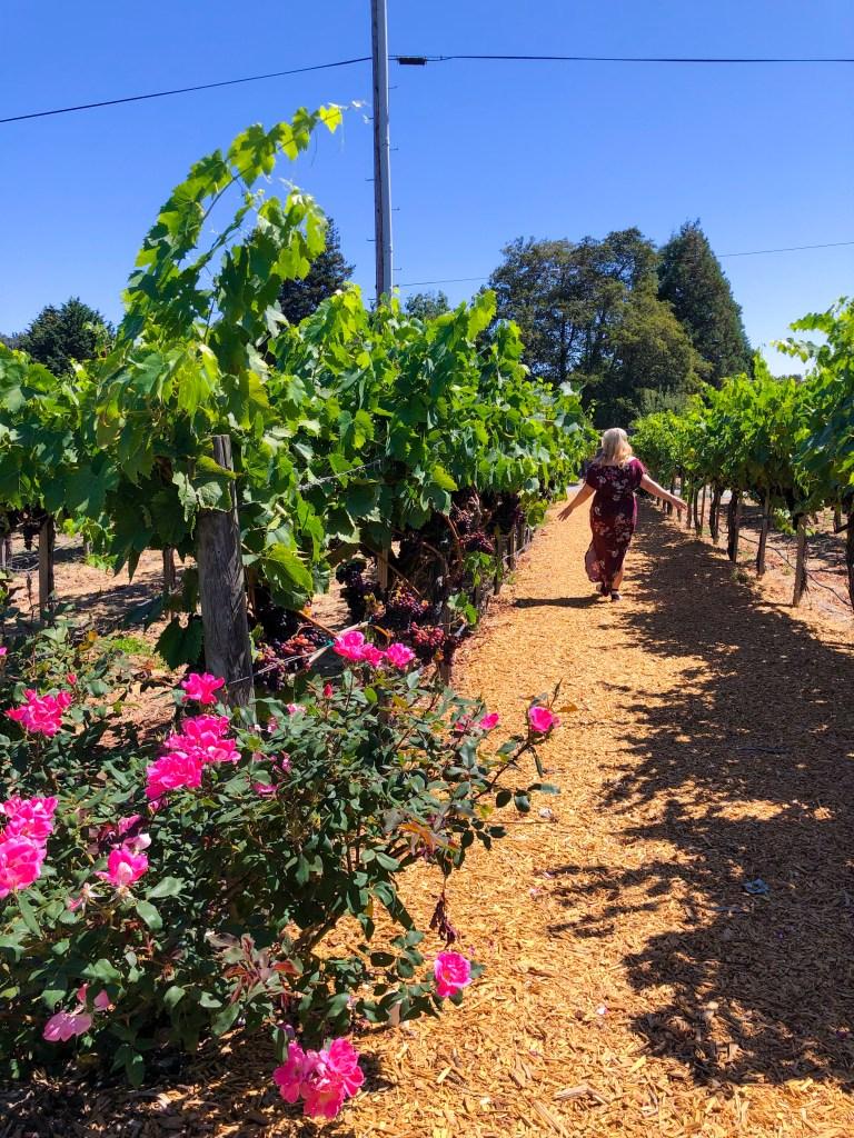 Folktale Winery Carmel, Best Vineyards California