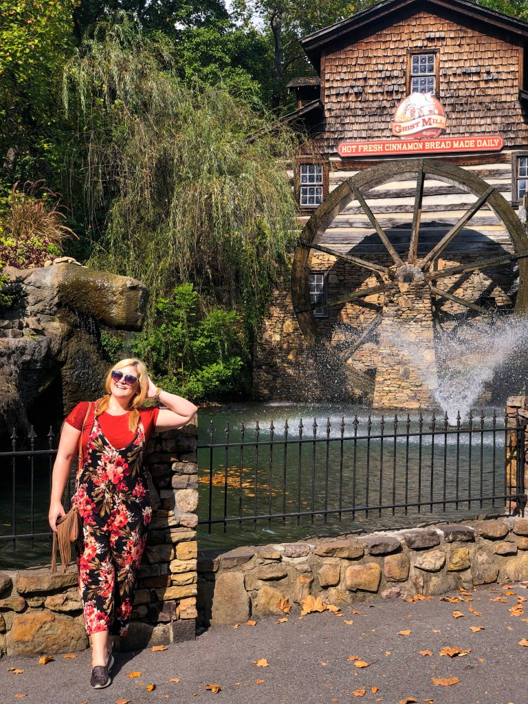 Dollywood Blog Review