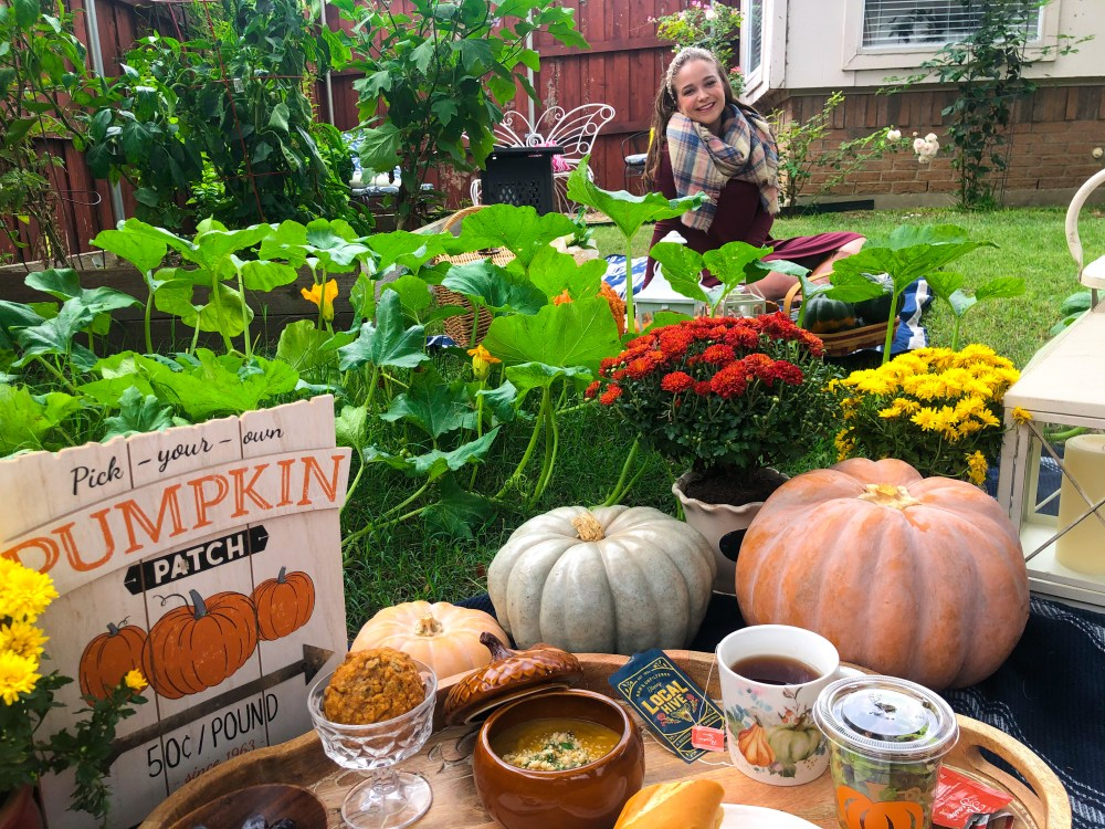 Fall Pumpkin Picnic Ideas