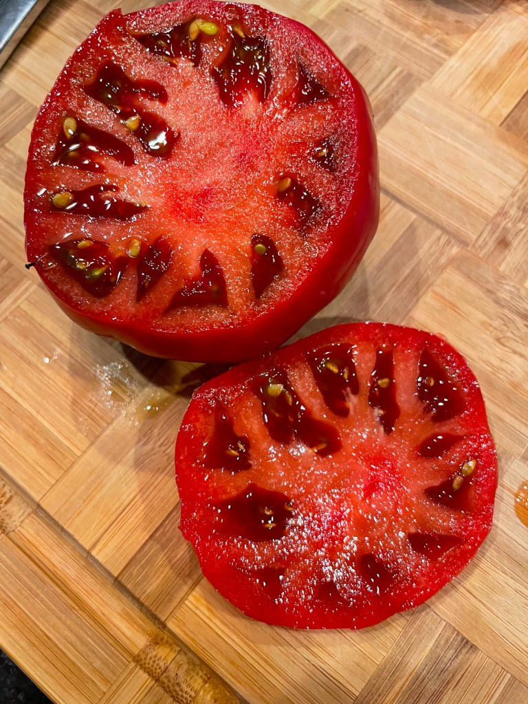 Burrata Summer Salad | Garden Tomato Recipes