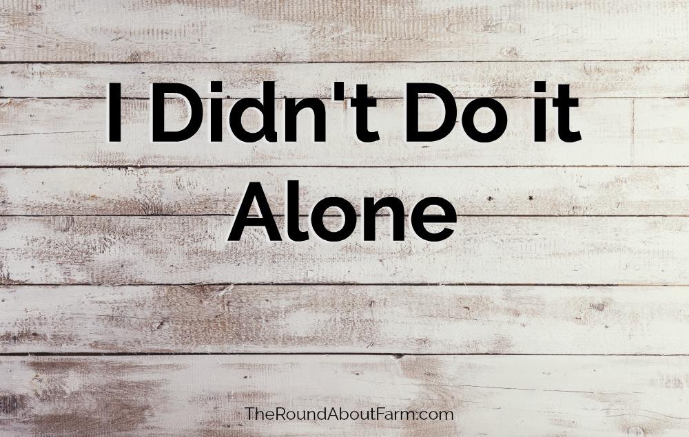 I Didn't Do it Alone