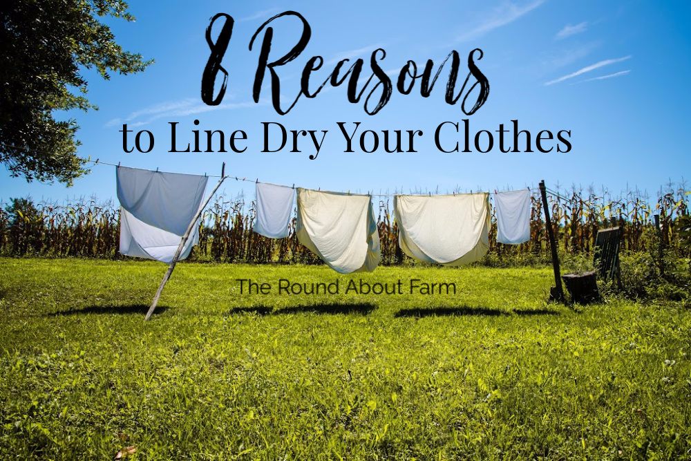 8 Reasons to Line Dry Your Clothes