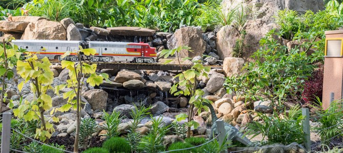 Volunteering with a G-Scale Railroad – Phipps Conservatory