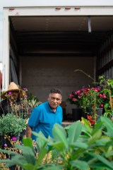 Juan Ortiz walks through his plants at the Vintage Market at Pierce College in Woodland Hills, Calif., on Sept. 22, 2019. Photo by Katya Castillo.