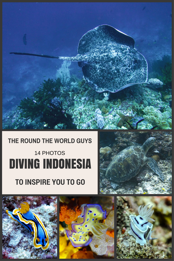 Do you love diving? I do, and when we want to see amazing things, we go to Indonesia. Here are fourteen photos to inspire you to get a plane ticket and go dive Indonesia.
