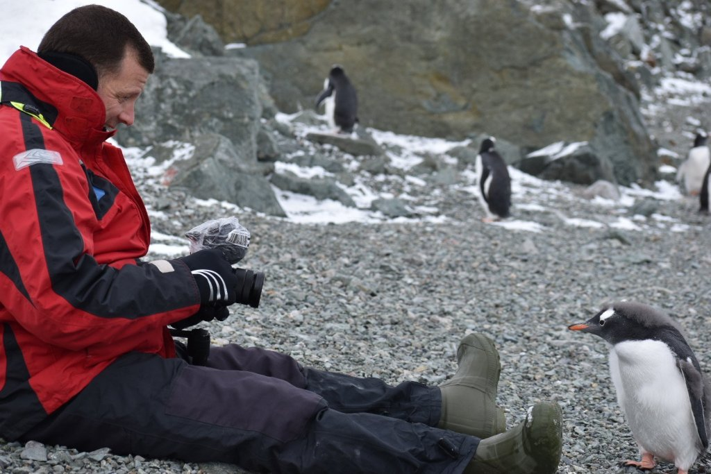 michael with a baby penguin.