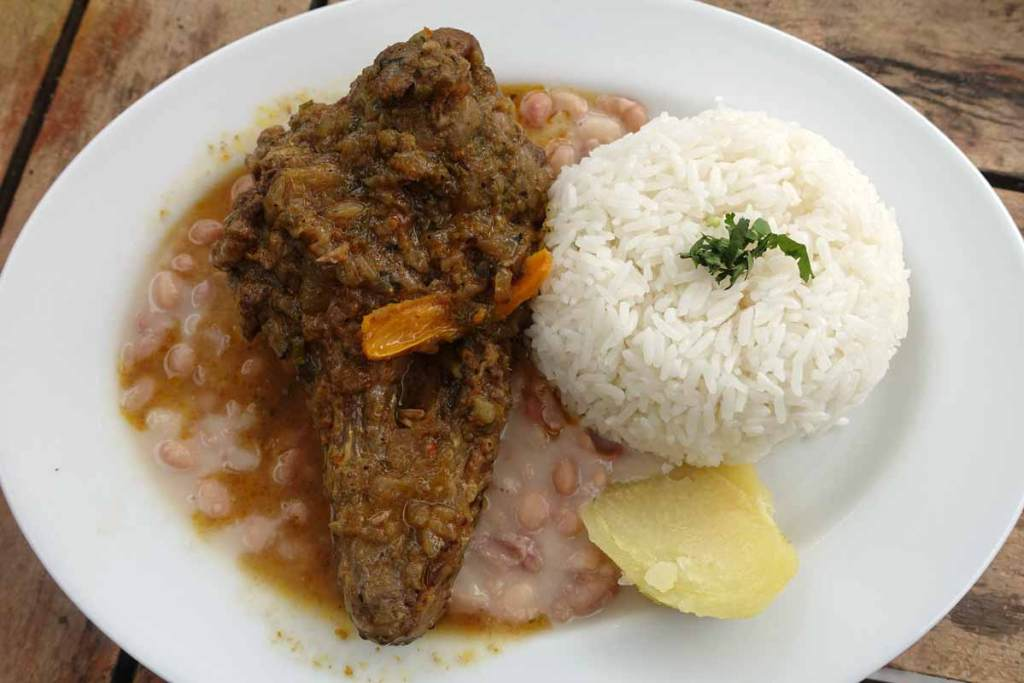 A browned duck wing in a brown sauce with white rice and yucca.