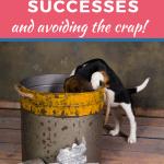 Success Versus CRAP Identity?
