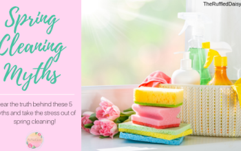 5 Spring Cleaning Myths and How to Debunk Them!