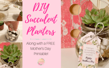 DIY Succulent Planter with FREE Printable